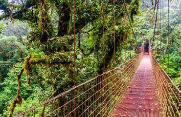 Monteverde-Costa-Rica