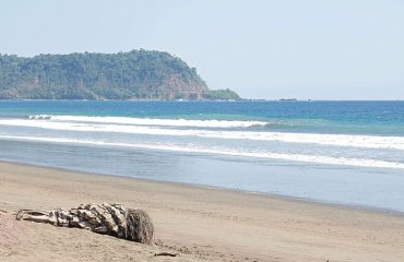 costa-rica-tropical-jungle-nature