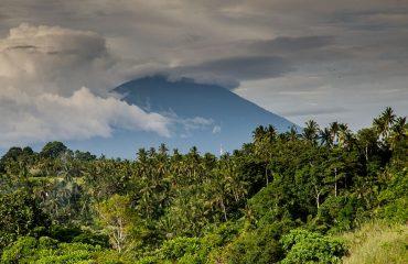 volcano-costa-rica-palm-trees-jungle